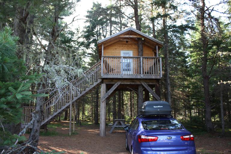 Dormir dans les arbres au camping miramichi famille au menu for Dormir dans le salon