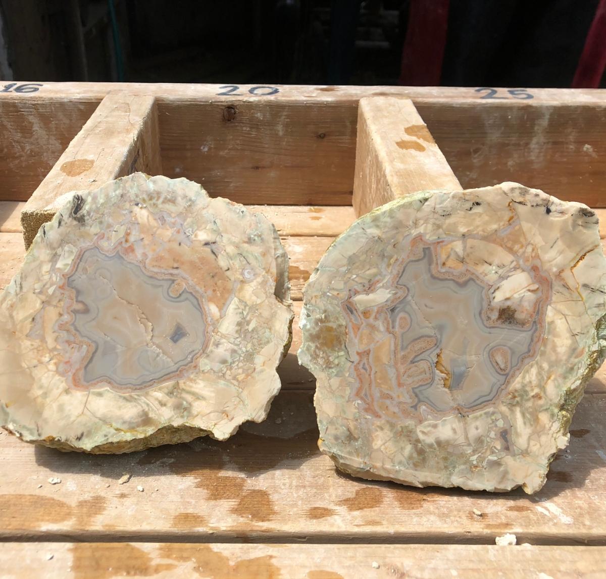 Chercher de véritables trésors au Mont Lyall