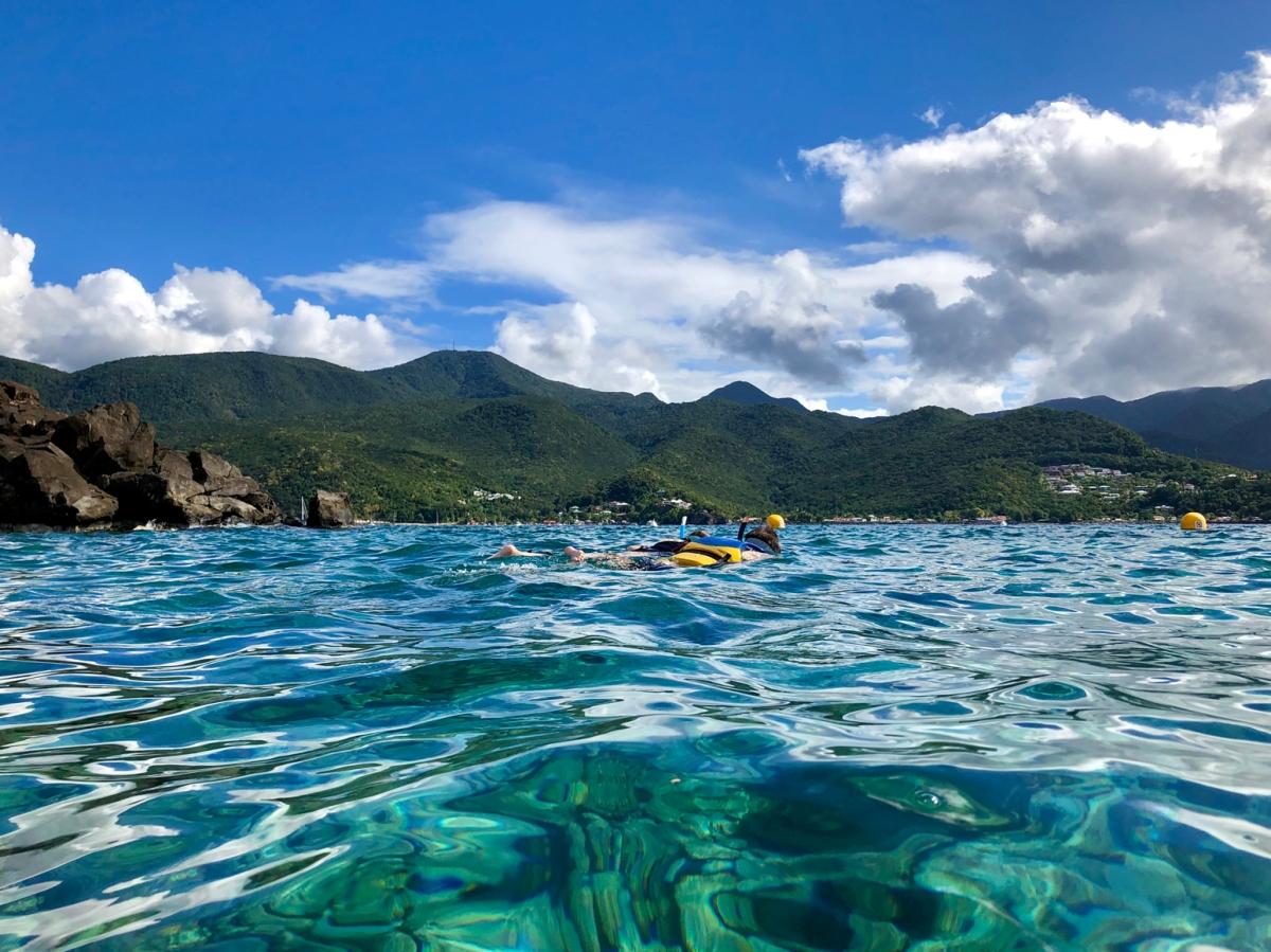 La Guadeloupe en famille: la réserve Cousteau